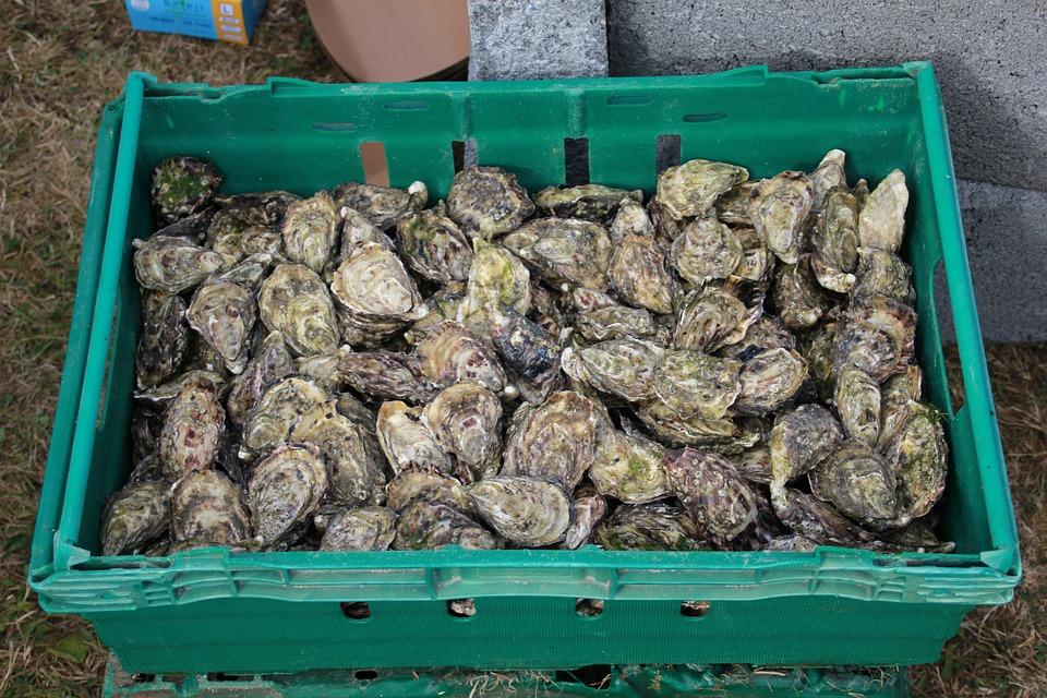 Huîtres, Fruits De Mer