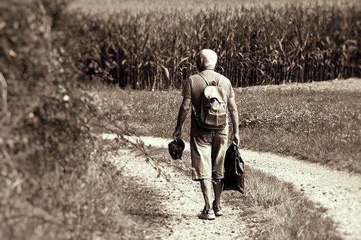 Man, Walk, Senior, Movement, Forest