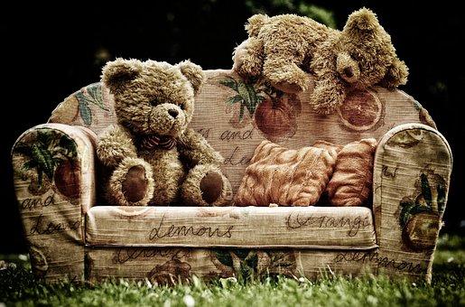 bear-3609383__340.jpg