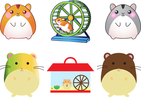 Hamster, Pet, Mouse, Cage, Hamster Wheel