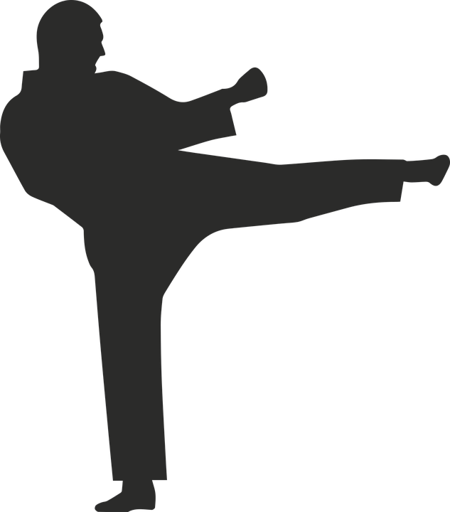 Karate Icon Fight Free Vector Graphic On Pixabay