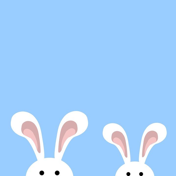 Bunny Petit Lapin Mignon - Image gratuite sur Pixabay