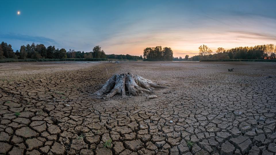 Trockenheit, Dürre, Risse, Trocken, Landschaft, Schlamm