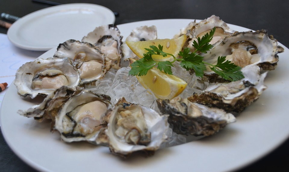 Image result for oyster and seafood
