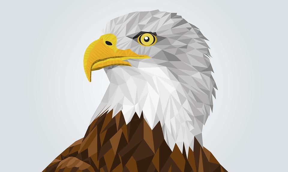 Adler Águila Calva Dibujo · Imagen gratis en Pixabay