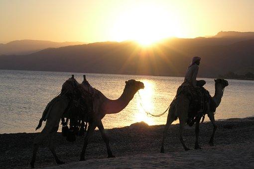 Egypt, Sunset, Desert, The Sun, Travel