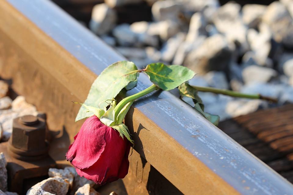 Sad Red Rose On Rail, Lost Love, Loving Memory, Tragedy