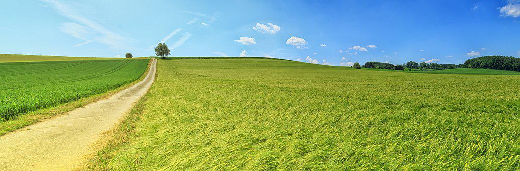 Panorama, Summer, Meadow, Field, Away