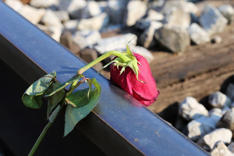 se sentir isolé et abandonné - rose fanée sur un rebord de rail