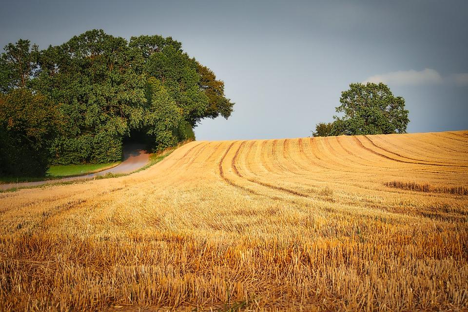 Aratás A Mező Mezőgazdaság - Ingyenes fotó a Pixabay-en