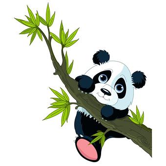 10+ Cartoon kartun hewan panda pixabay animal funny terbaru