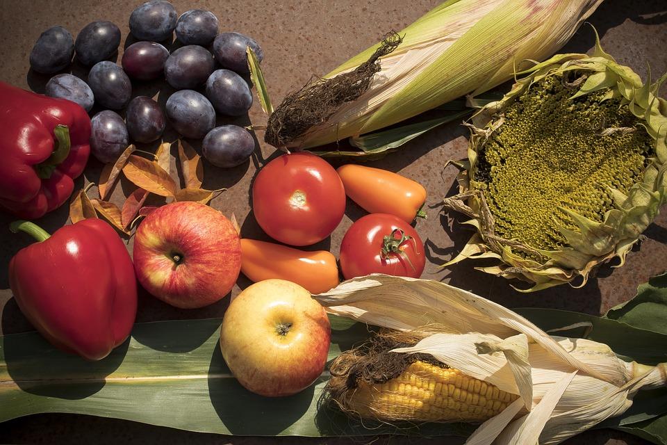 Herbst Ernte Paprika Kostenloses Foto Auf Pixabay