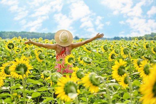 ヒマワリ, フィールド, 女性, 黄色, 夏, 花, 花を咲かせる, 幸せ