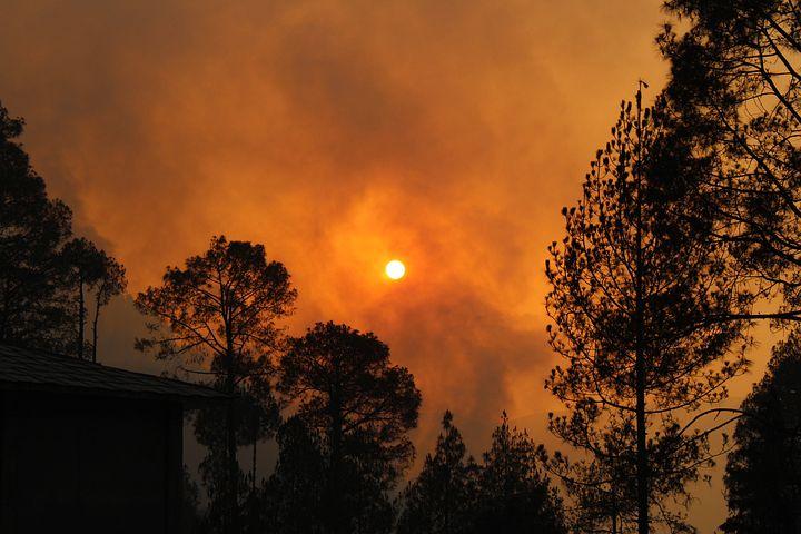 голубя картинки пожара от солнца впв изготавливают стали