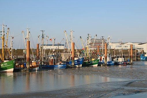 Данные о ценах рыбного аукциона Портленда 22.11.2019 – 28.11.2019