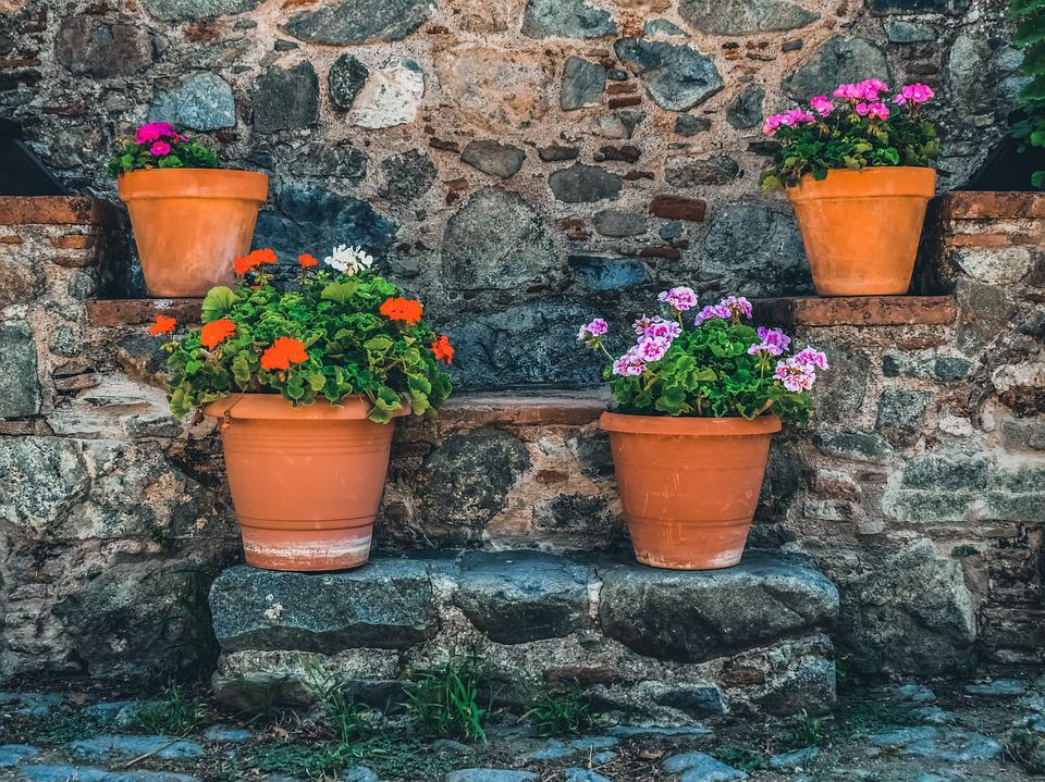 Stairs, Pottery, Flowers, Village, Summer, Stone