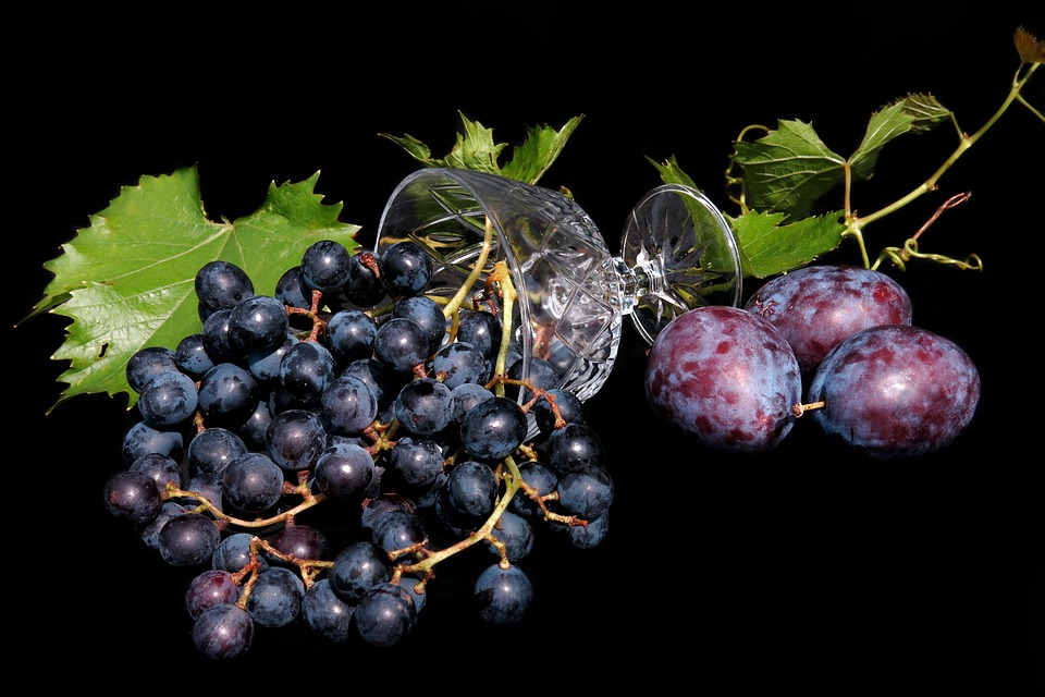 87+ Gambar Anggur Segar Paling Hist