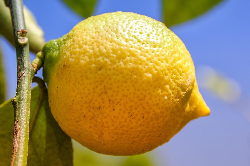 vitaminer i citron