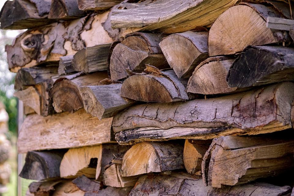 Deforestación (Foto: Pixabay)