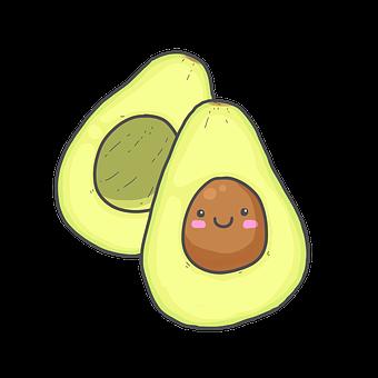 The History of the Avocado