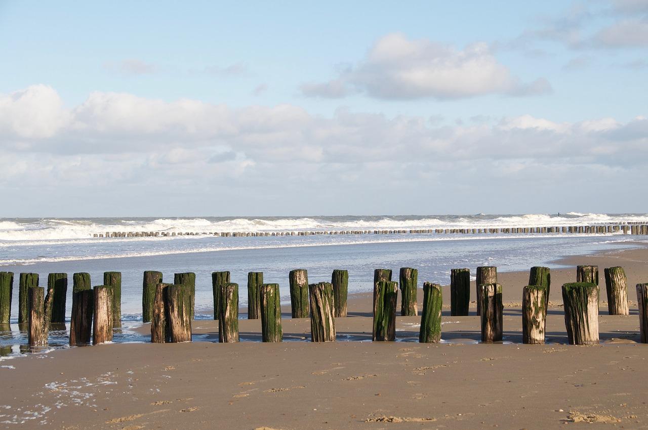 программа для голландия фото пляжи занимает практически