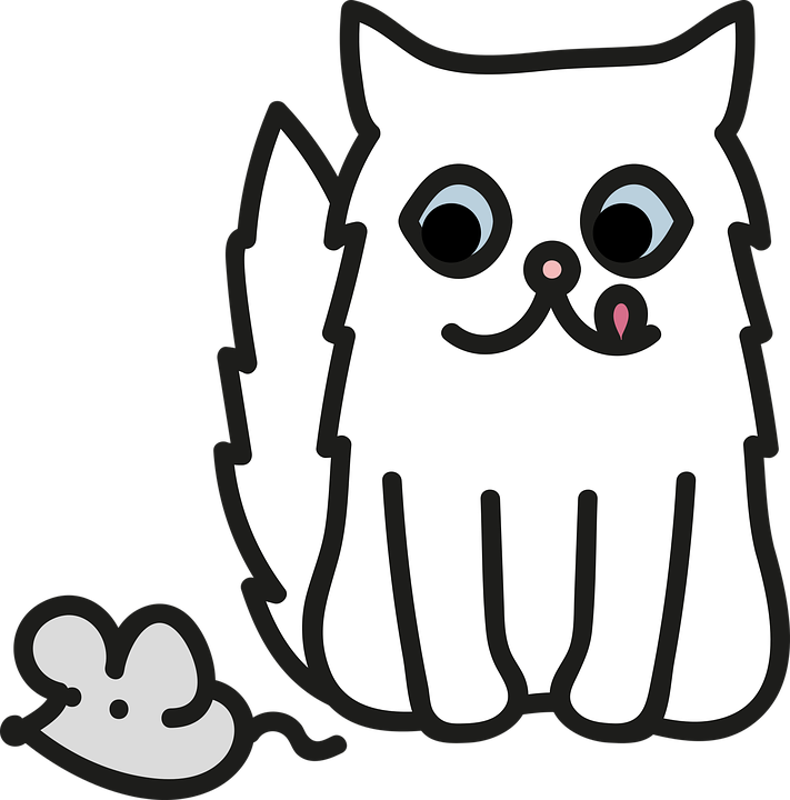 Zadarmo čierna mačička biely péro