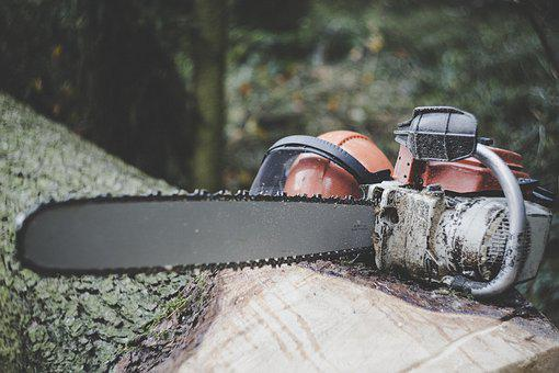 Chainsaw, Forestry, Tree, Felling, Wood