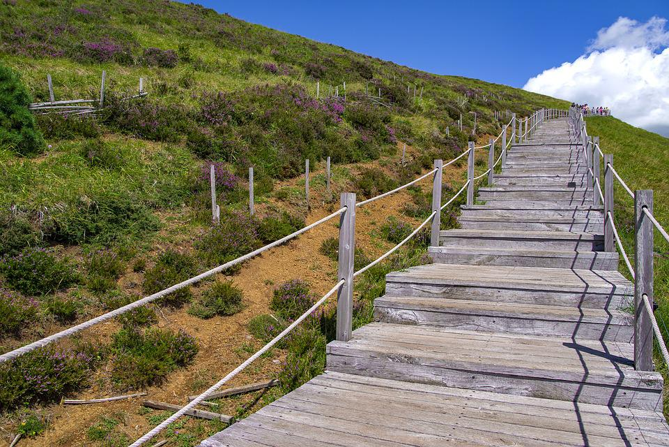 Stairs Wood Path   Free Photo On Pixabay