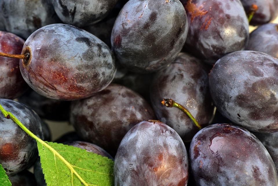 Las frutas que más le gustan a las aves