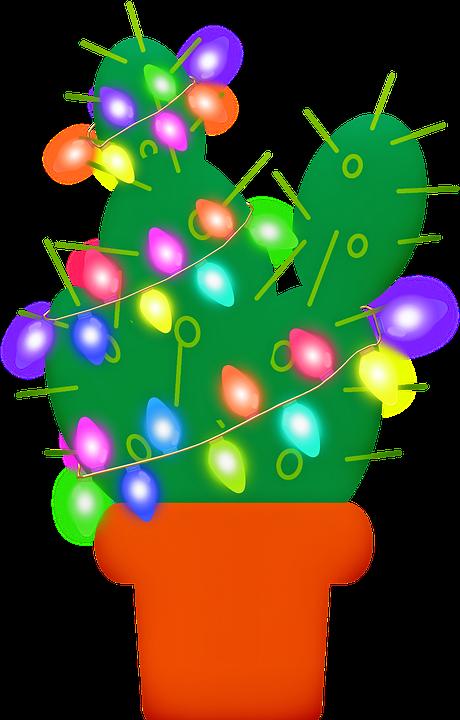 christmas cactus christmas lights cactus cacti red - Christmas Cactus Lights · Free Image On Pixabay
