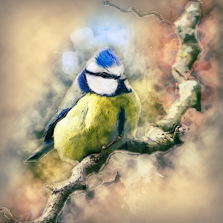93 Gambar Alam Fauna Paling Keren