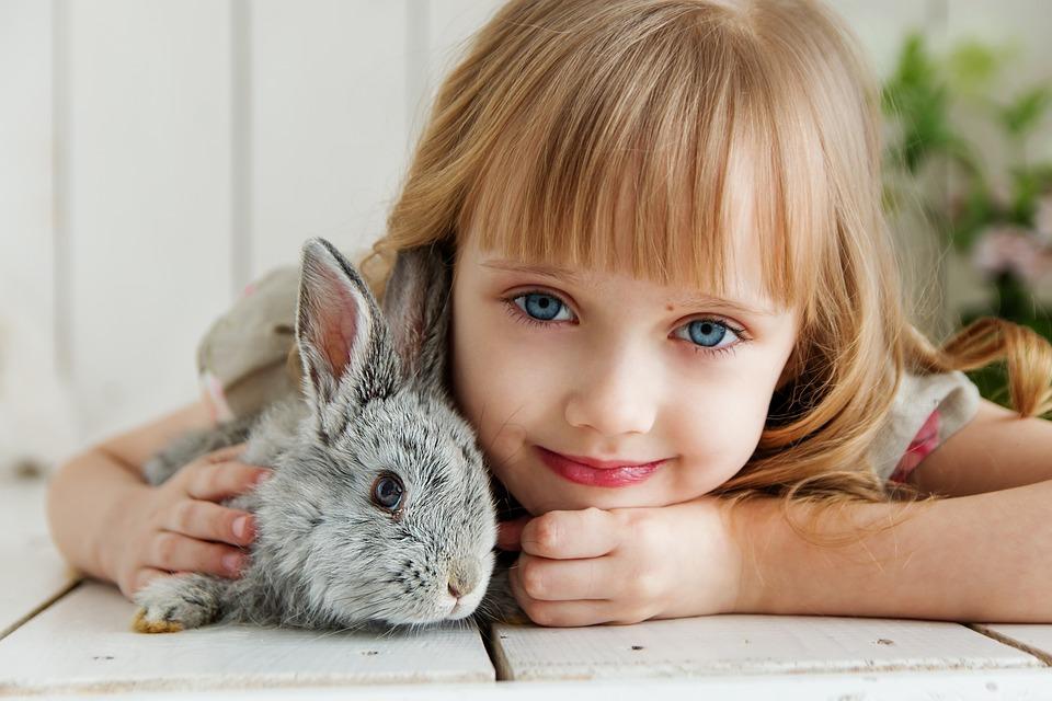 ウサギ, うさぎ, 赤ちゃん, 女の子, スタジオ, おもちゃ, 美しい, かわいい, 子供, 花, 穏やか