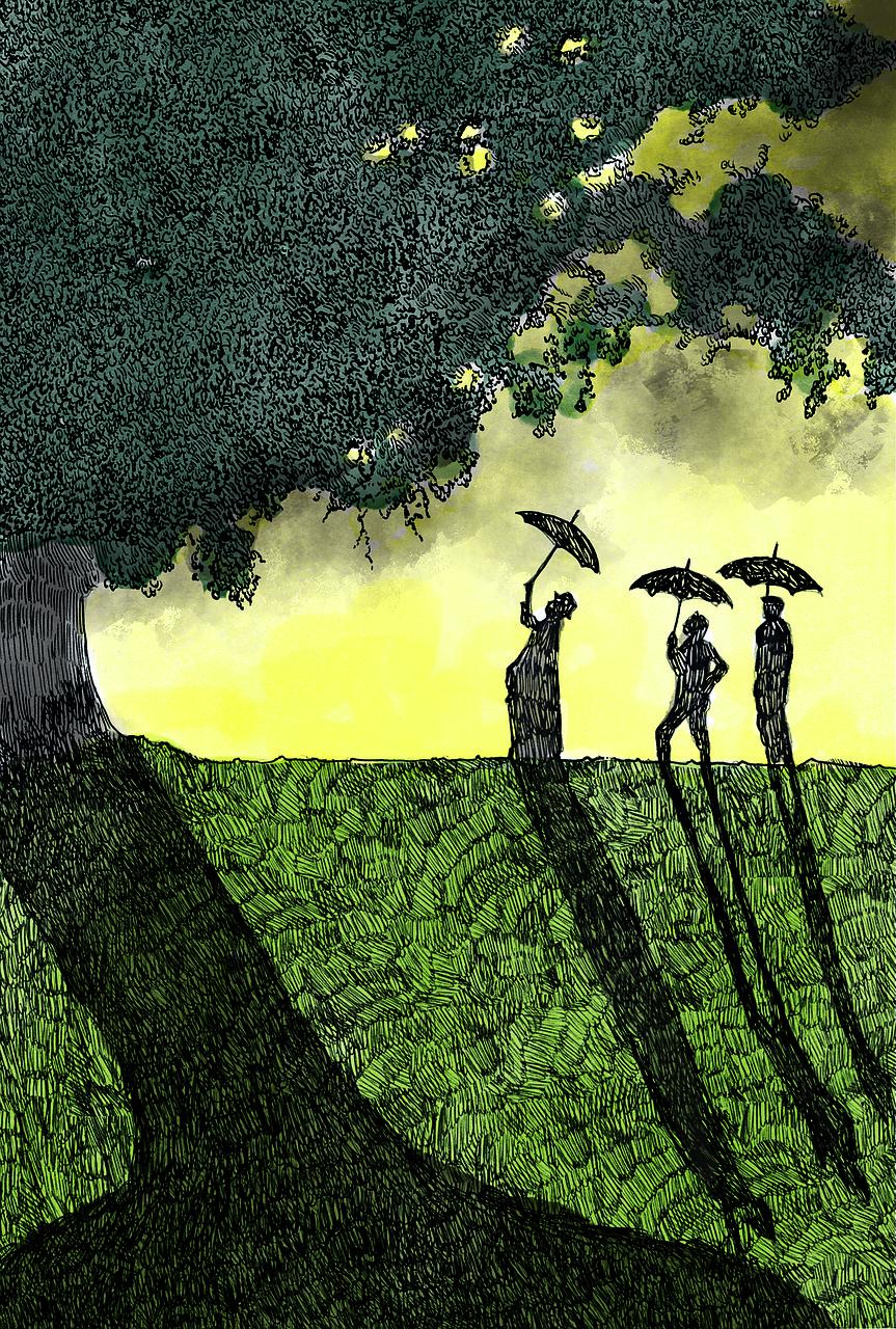 Картинка дерево с тенью