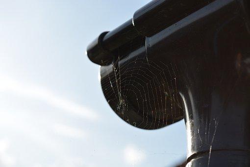 Cobweb, Spider, Gutter, Nature, Sky