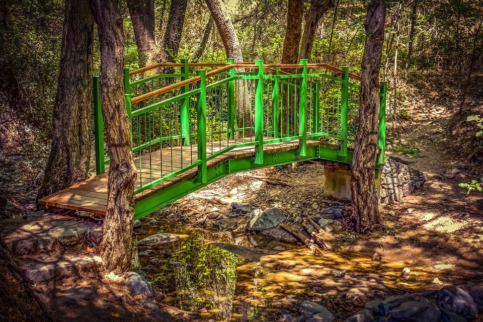 Bridge, Wooden, Creek, Trees, Scenic, Summer, Woods