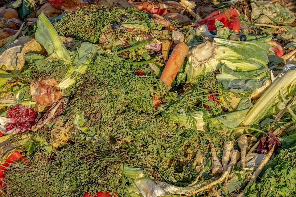 堆肥, ごみ, 生物学的, 廃棄, フルーツ, 野菜, 残り物のレシピ, 堆肥の山, 肥料, 廃棄物, 生態学