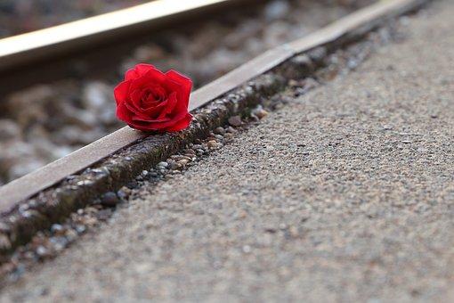 レッドローズ近くのレール, を記憶すべての被害者, 自殺レール, お悔やみ