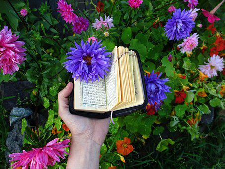 100+ Free Quran & Islam Images - Pixabay