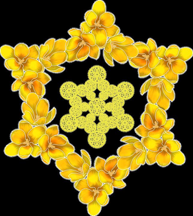 Crocus hexagram yellow free image on pixabay crocus hexagram yellow flowers sacred the list mightylinksfo