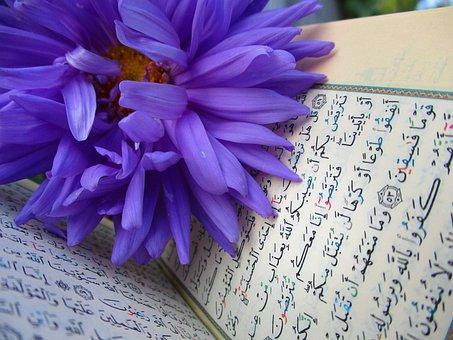 100 Free Quran Islam Images Pixabay