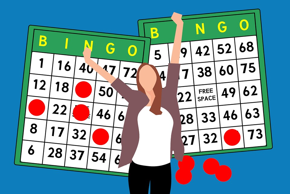 evolution of bingo