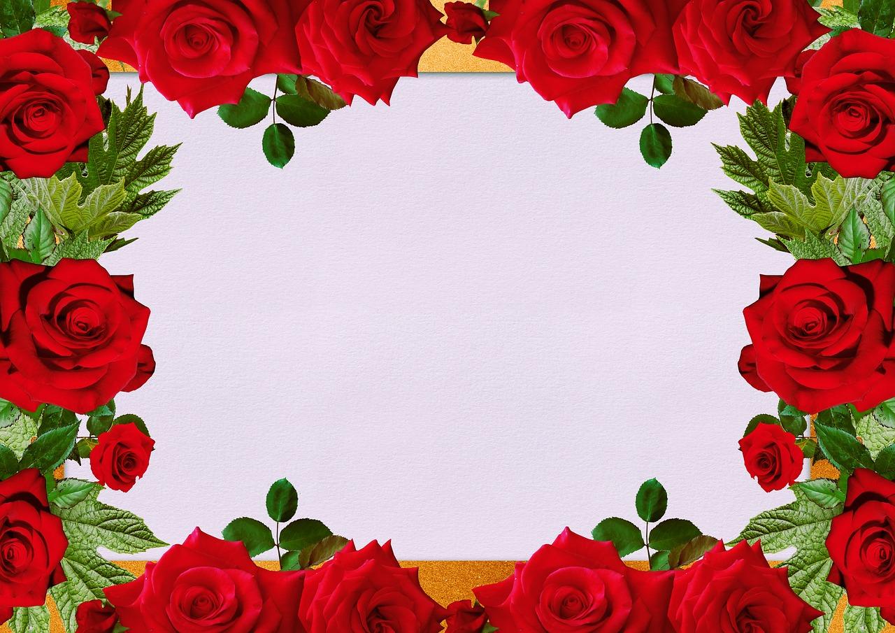 Открытки рамки розы, открытки