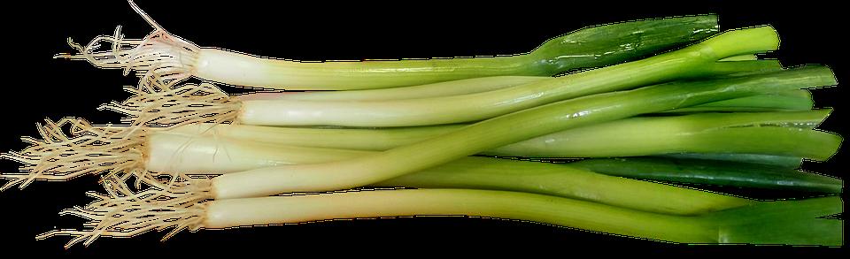 Spring Onions, Vegetable, Salad, Food, Cooking