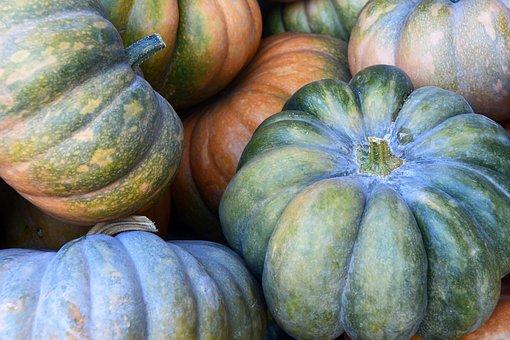 かぼちゃ, ひょうたん, 野菜, 秋, 収穫, 感謝祭, 装飾, ハロウィーン