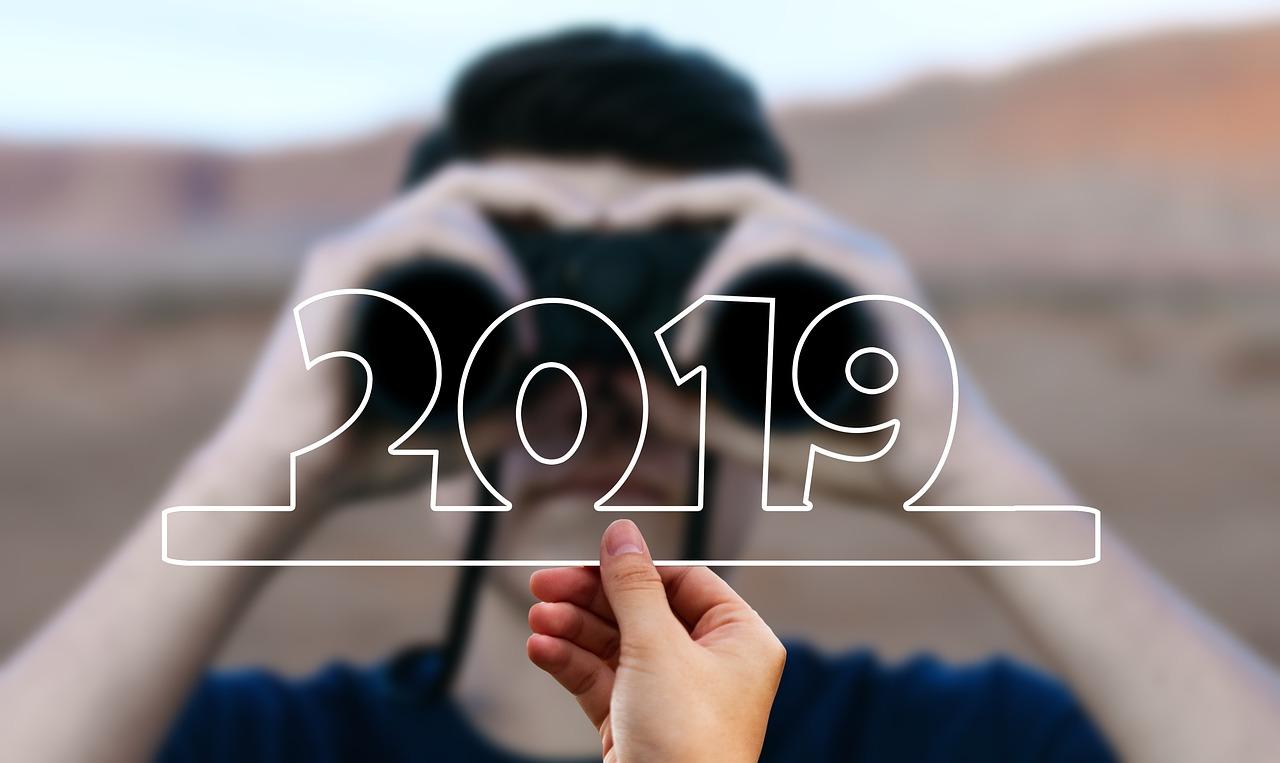 2019 书影游总结