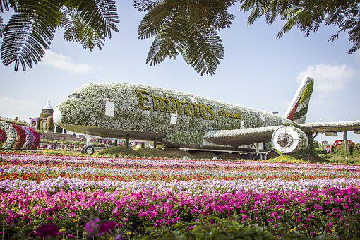 facts and stats Miracle Garden Dubai