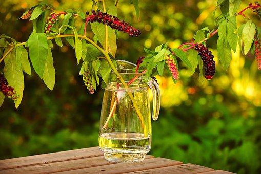 ガラス花瓶, 瓶, 水, 幹, 葉, 静物, テーブル, 装飾