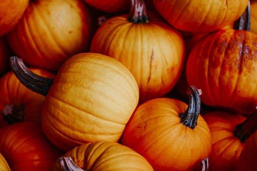 pumpkins-3693624__340.jpg
