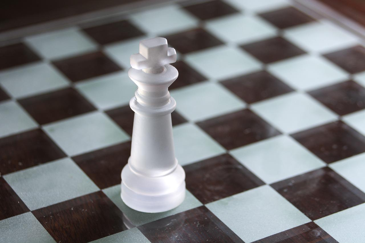 Картинка шахматная доска роза