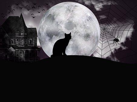 Halloween, Night, Fantasy, Full Moon